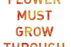 {bon mot} monday | grow on